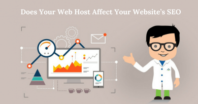 web-host-affect-websites-seo-page-rank-2-min