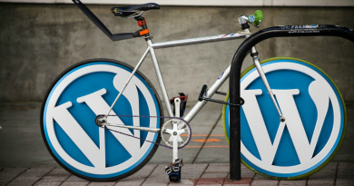 WordPress Operation and its Extensibility