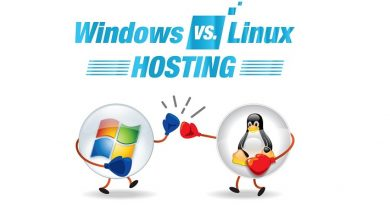 Linux or Windows Hosting