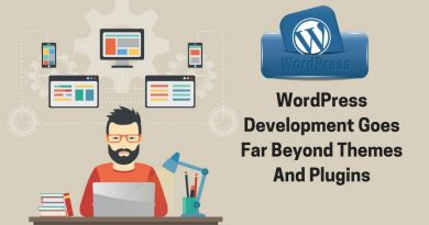 wordpress-development-goes-far-beyond-themes-and-plugins-min