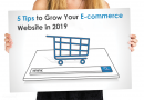 5 Tips to Grow Your E-commerce Website in 2019
