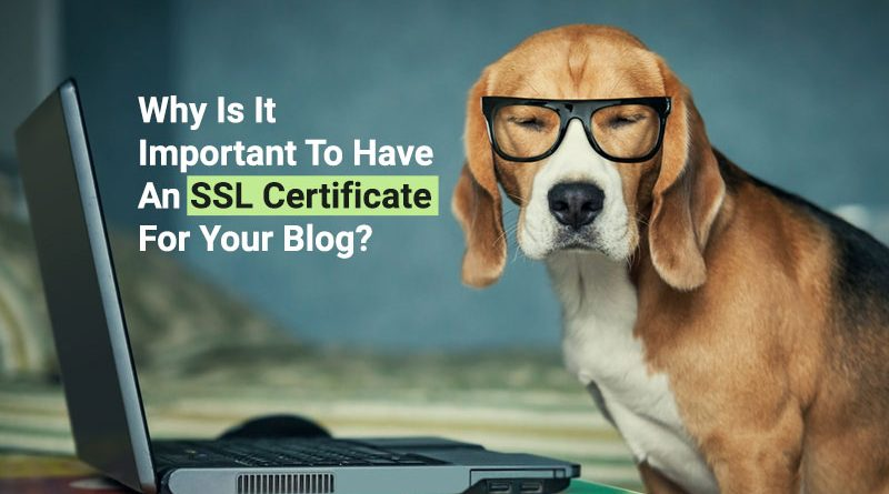 SSL certificate, blog