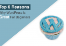 Top 6 Reasons Why WordPress is Great For Beginners