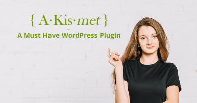 Akismet Plugin for WordPress