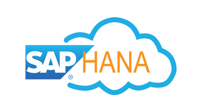SAP HANA Cloud Services DBaaS and DWaaS