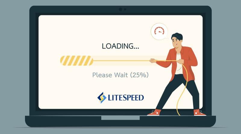 LiteSpeed, LiteSpeed server
