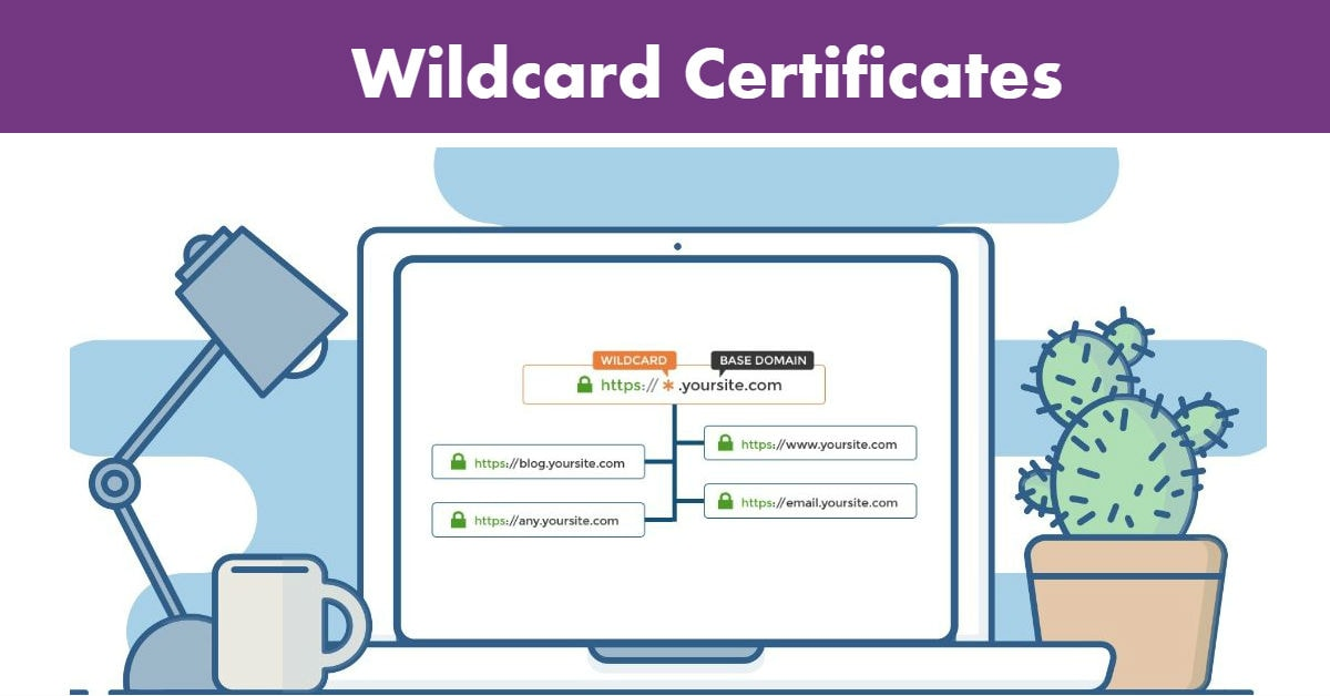 Wildcard Certificates Definition Importance Prerequisites Steps