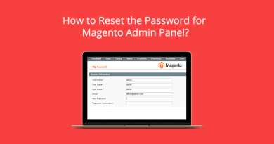 How to reset the password for Magento admin panel?