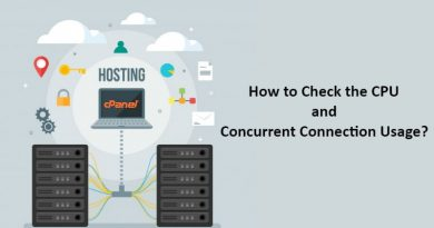 How to Check the CPU and Concurrent Connection Usage?