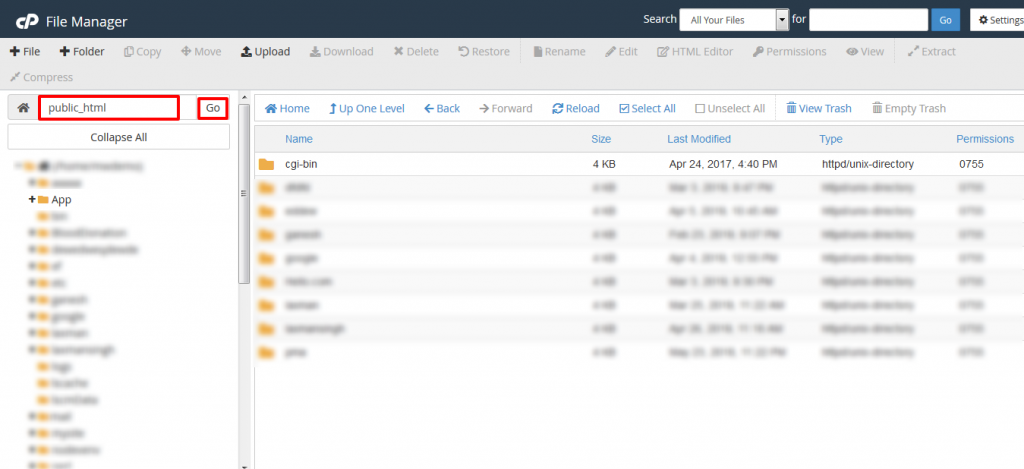cPanel File Manager Go