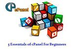 An Insight On 5 Essentials Of cPanel For Beginners