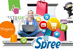 Choosing The Right eCommerce Platform for Your Online Store